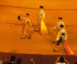 Bullfight Lap of Honoour